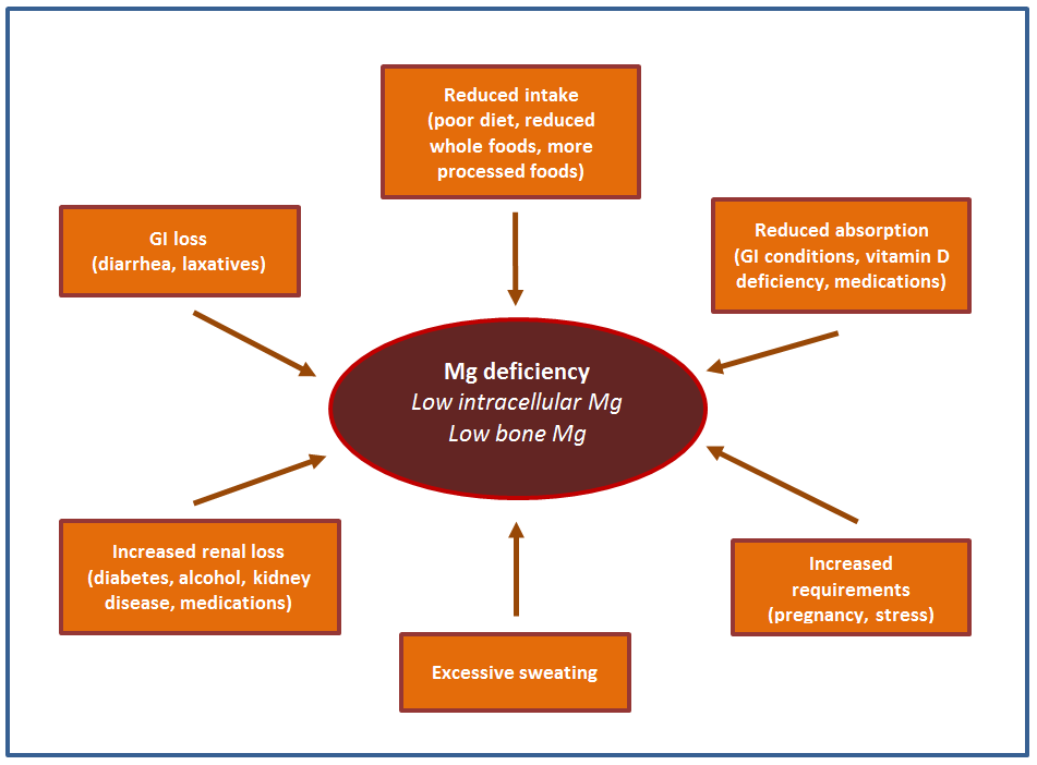 Figure depicting factors that contribute to magnesium deficiency.
