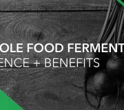 Feature Image: Whole Food Fermentate