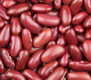 Feature Image: Kidney Beans: Nutrient and Phytonutrient Profile