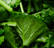 Feature Image: Turnip Greens: Nutrient and Phytonutrient Profile