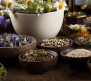 Feature Image: Special Series Trailer: Medicinal Herbs