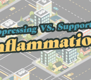 Feature Image: Suppressing vs. Supporting Inflammation