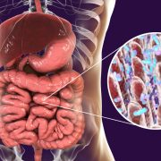 Feature Image: Gut Microbiome Disruptors