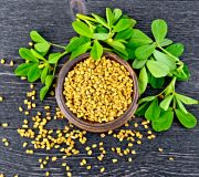 Feature Image: Fenugreek for Glucose Management and Breastfeeding