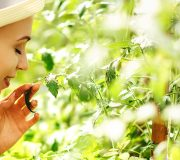 Feature Image: A Naturopathic Approach to Healthy Skin